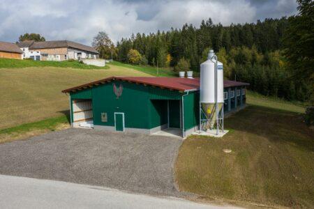 Bio-Hühner Vormaststall in Österreich